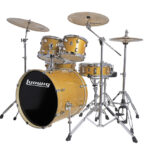 Ludwig 22″ Evolution 5 Piece Drum Kit With Hardware – Gold Sparkle