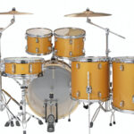 Ludwig 22″ Evolution 6 Piece Drum Kit With Hardware – Gold Sparkle